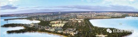 红岛楼市转折点:7000人选1500套房 仍未清盘!