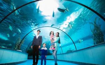 海洋世界建在福州永泰深山里 国庆长假不能错过