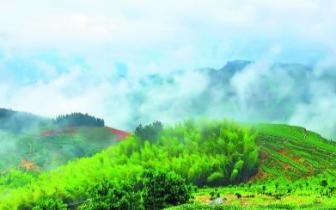 《福建省生态文明建设促进条例》下月起施行