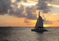 【名校之路】战争、烈酒、拳击……在Key West认识一个真实的海明威
