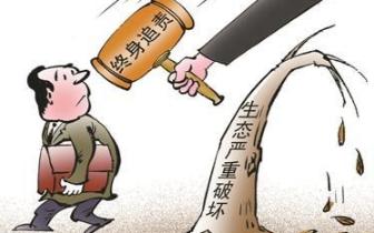 """全省首例生态环境""""刑附民""""公益诉讼案庭审"""