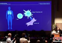 日媒:诺奖成果打破百年抗癌困局 开创全新免疫