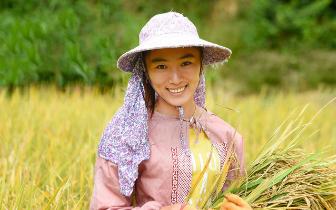 建宁农民一手水稻一手稻花鱼 喜笑颜开