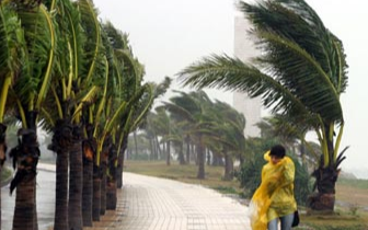 """6日前后台风""""康妮""""或转向北上 4、5日沿海风力增大"""