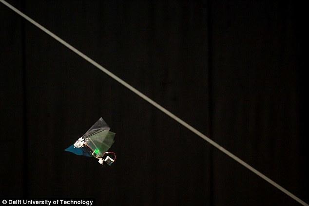 可悬停, 可翻转!. 新型仿生机器人灵活度堪比昆虫
