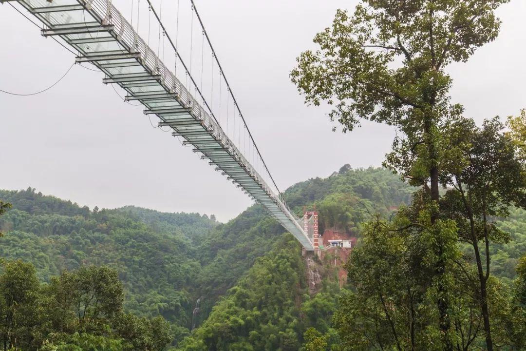 免票|60层楼高!386米长!宜宾首座9D玻璃桥来了,一天就可打来回