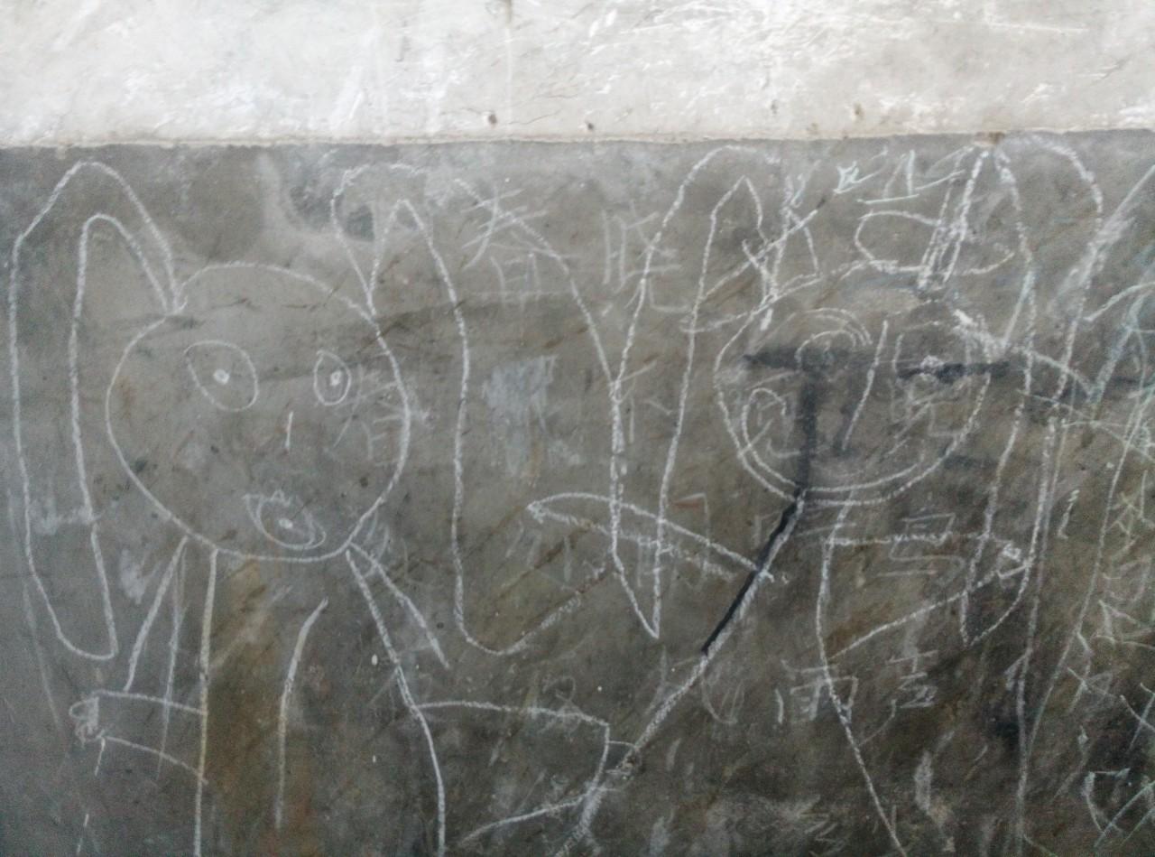 墙面上留着的画,楼里小孩画的公主们。 (作者供图)