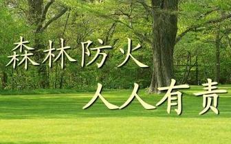 """长春市重点林区全程""""监护防火"""""""