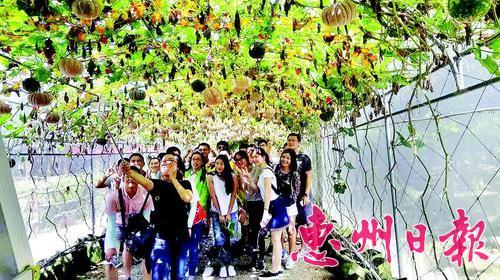 """""""十一""""黄金周惠阳旅游活动丰富多彩,旅游市场火爆"""
