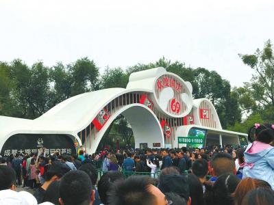 国庆日均3万人次看熊猫:排队两小时 打卡五分钟
