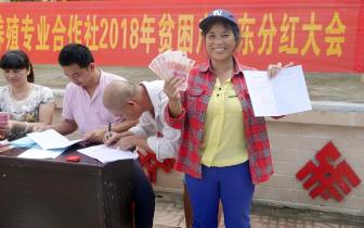 红毛镇金屏村32户村民首领3.83万分红款