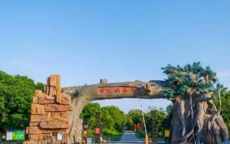 珲春沙丘公园进入闭园期 明年再相见