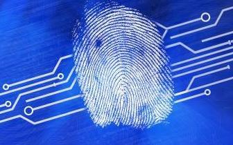 支付宝:部分苹果用户ID被盗刷损失钱财 或因免密支付