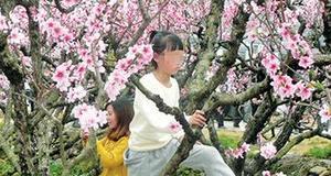 劝游客攀爬花架被骂处罚必须跟进