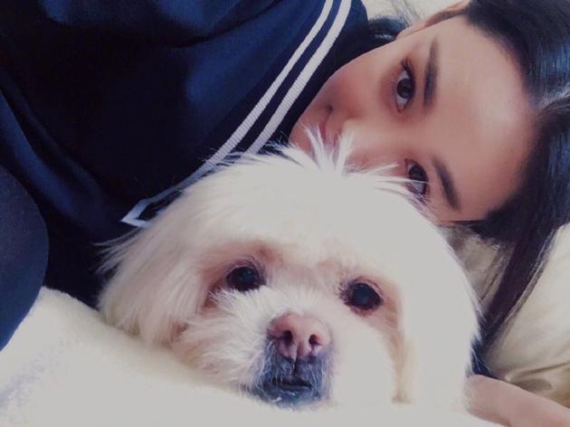 张馨予发文悼念去世爱犬:谢谢你陪伴的 18年