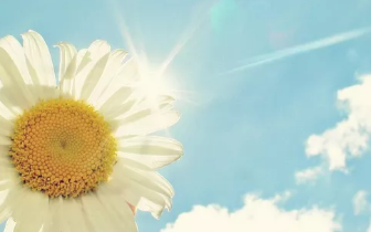 感悟 |生活中可以提高幸福感的8件小事