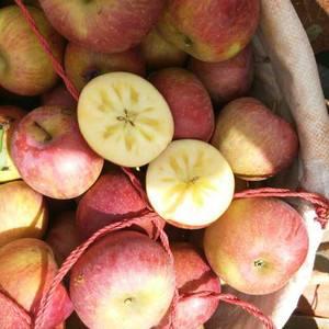 凉山盐源50万斤苹果抢收不及?真相是……