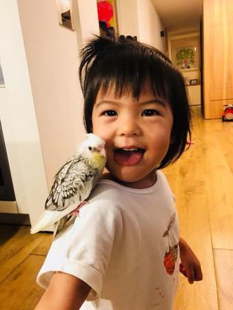 宠物小鸟离世 贾静雯心痛发文:怎么说走就走了