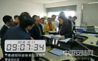 孝感市委常委调研安陆经济普查并服务业纳统工作