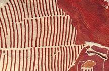 甘肃高台:辣椒丰收 晒场如铺红毯