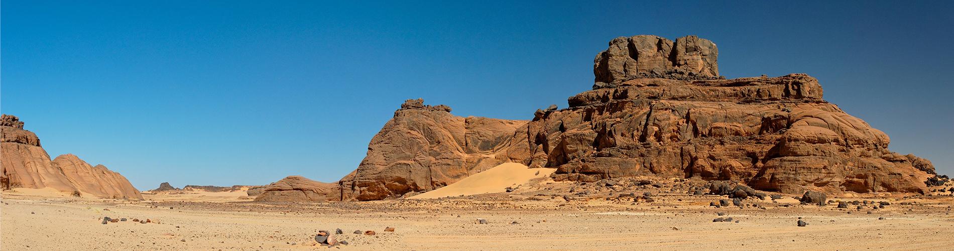 盐池:从沙蚀草原到绿树成荫 发展起沙区绿色产业