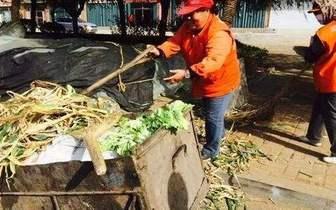 秋菜上市半个月 宽城区清理秋菜垃圾2000余吨