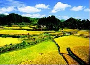 唐山举办农业产业化企业经营管理者培训班