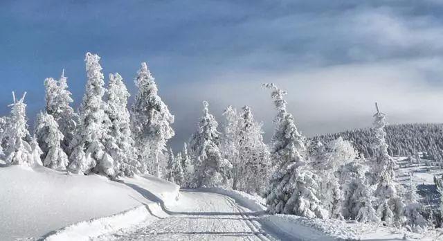 今年的冬天是暖冬还是冷冬呢?专家给出答案