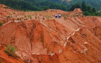 赣州稀土矿山修复缓慢 综合治理规划造假
