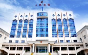 当事人议价模式 汉川法院成功办理首例议价网拍案件
