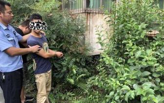 内江男子雨夜砸车偷盗 赃物藏在小区草丛中