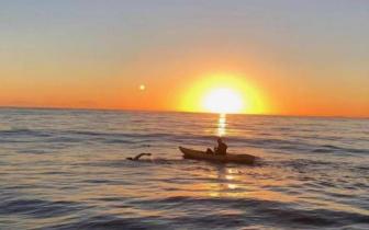 中国第一人!东莞草根泳者成功横渡卡特琳娜海峡