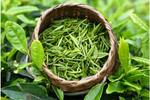 常喝绿茶好处多 还能减少脱发