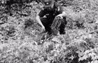 森林公安局