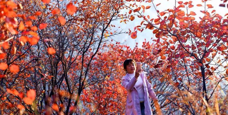 河北平山:秋漫太行