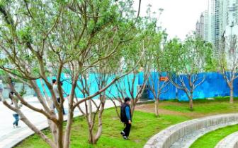 曝光!达州南城滨水公园种种不文明