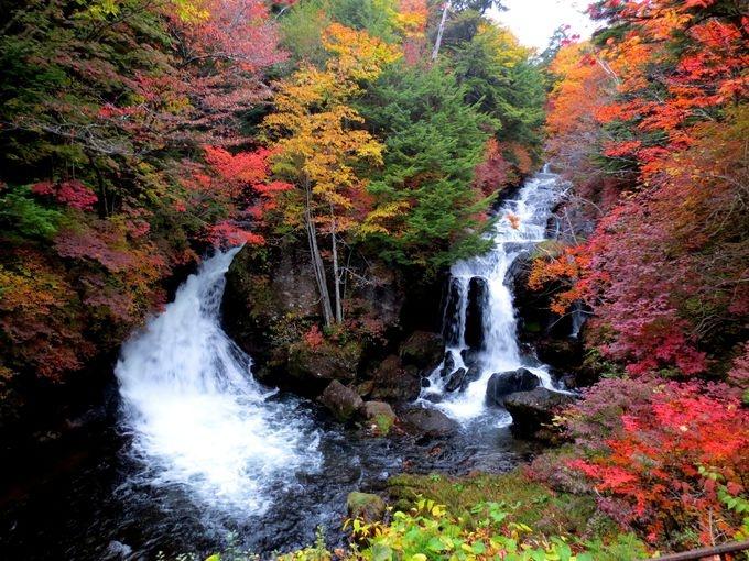 今年日本赏红叶 一定要去这10个地方!
