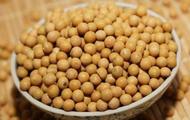 科技日报:《黑龙江日报》转基因大豆报道严重失实