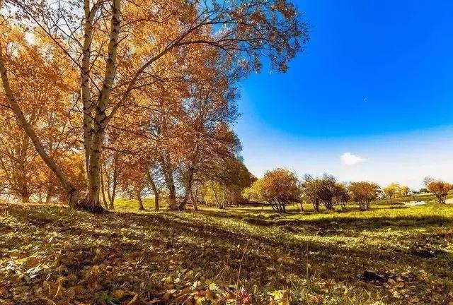 最美的风景永远在路上!秋季最美的十条自驾线路,看遍绝美秋色!