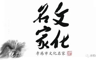 人物专访《孝感首届文化名家》-管淳