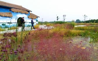 湖北省景评员到朱湖国家湿地公园开展3A景区初评