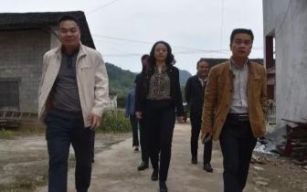 荔浦县委副书记唐双喜到县法院调研脱贫攻坚工作