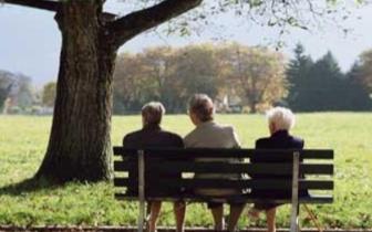 国内首部积极应对人口老龄化国情报告近日发布