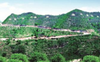 长治市着力打造现代林业生态体系