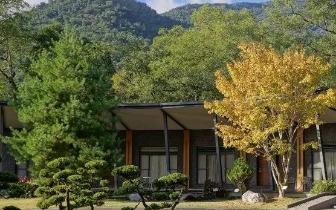 去山里放松一下 全台五大疗愈系森林住宿
