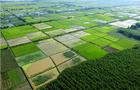 农村土地承包法