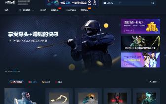 黑客利用漏洞盗窃网络公司12余万元 渝中警方缜密侦查