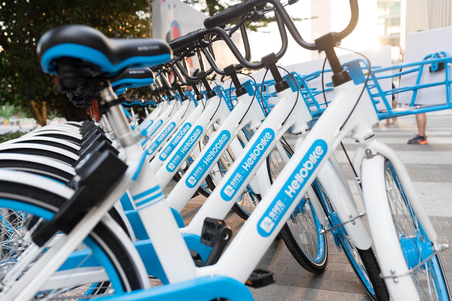 哈啰单车CEO杨磊:已经在100多个城市实现净利润