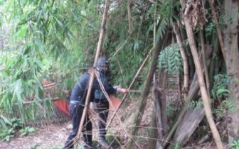 九龙坡:马蜂窝困扰村民蜇伤孩子 走马派出所社区民警