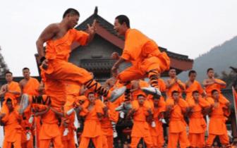 少林武术节传来喜讯 三门峡4名选手喜获殊荣